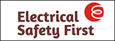 Logo elec safety